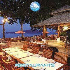 Meals & Restaurants
